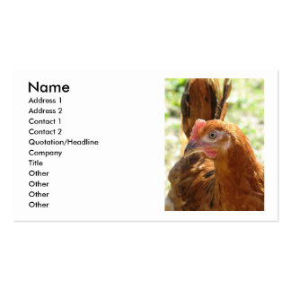Rhode Island Red Pack Of Standard Business Cards