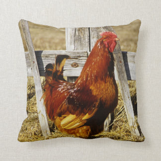 Rhode Island Red Rooster Cushion