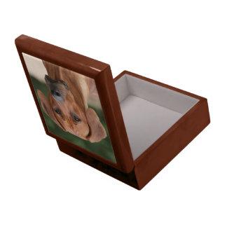 Rhodesian Ridgeback case Gift Box