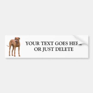 Rhodesian Ridgeback dog beautiful photo custom Bumper Sticker