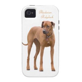 Rhodesian Ridgeback dog beautiful photo, gift iPhone 4/4S Cases