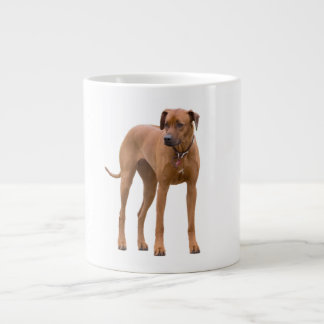 Rhodesian Ridgeback dog beautiful photo gift Large Coffee Mug