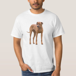 Rhodesian Ridgeback dog beautiful photo, gift T-Shirt