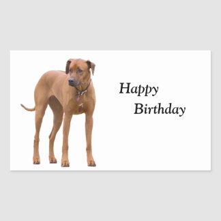 Rhodesian Ridgeback dog photo happy birthday Rectangular Sticker