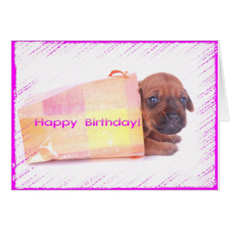 Rhodesian Ridgeback HAPPY BIRTHDAY Greeting Card