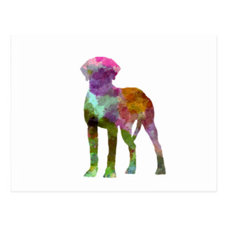 Rhodesian Ridgeback in watercolor Postcard