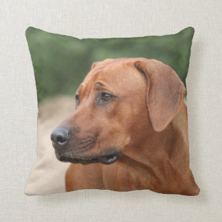 Rhodesian Ridgeback kiss Cushion