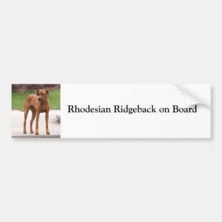 Rhodesian Ridgeback on board custom bumper sticker