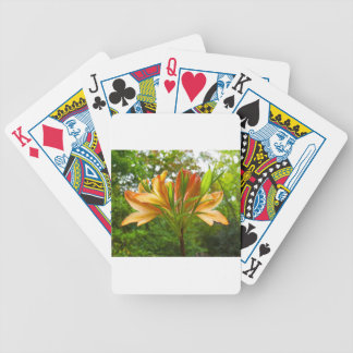 Rhododendron flower bloom with texture. bicycle playing cards