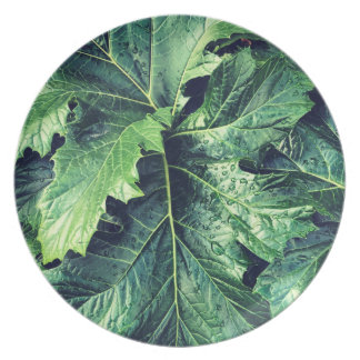 Rhododendron Leaves Plate