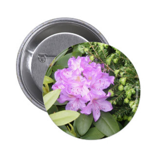 Rhododendron - Purple Flowers in Spring Pinback Buttons