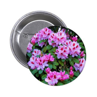 Rhododendrons Pin