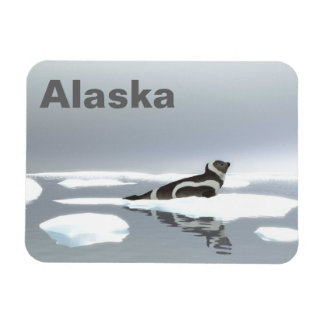Ribbon Seal On Ice Magnets