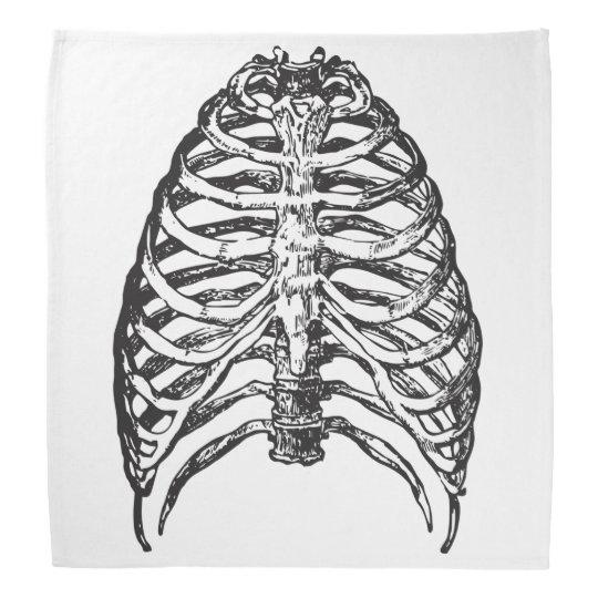 Ribs illustration - ribs art bandana