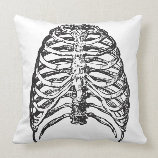 Ribs illustration - ribs art cushion
