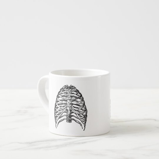 Ribs illustration - ribs art espresso cup