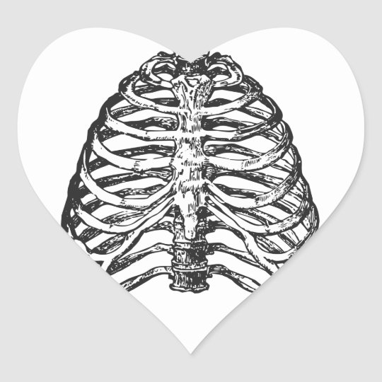 Ribs illustration - ribs art heart sticker