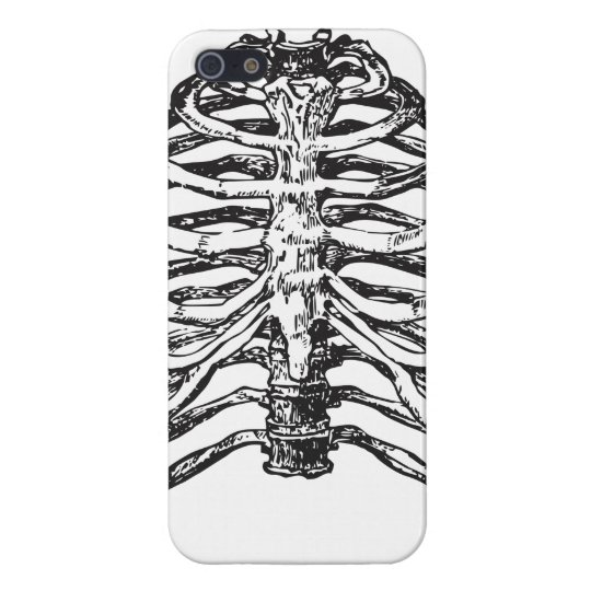 Ribs illustration - ribs art iPhone 5/5S case