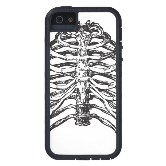 Ribs illustration - ribs art iPhone 5 case