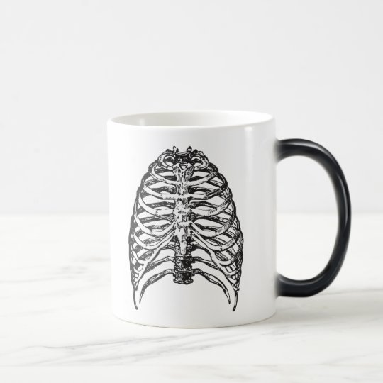 Ribs illustration - ribs art magic mug