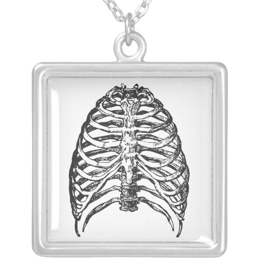 Ribs illustration - ribs art silver plated necklace