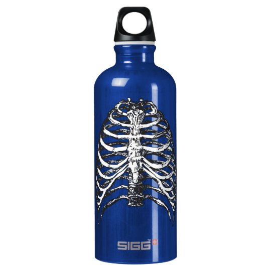 Ribs illustration - ribs art water bottle
