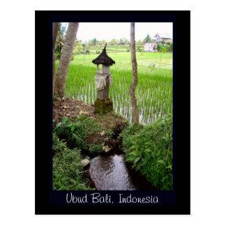Rice Paddy, Temple, Ubud Bali, Indonesia Postcard