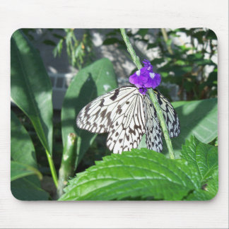 Rice Paper Butterfly Mouse Pad