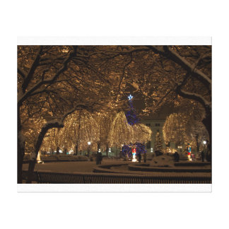 Rice Park Canvas Print