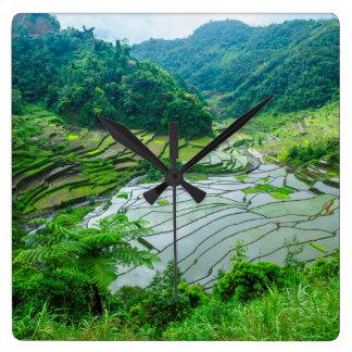 Rice terrace landscape, Philippines Square Wall Clock