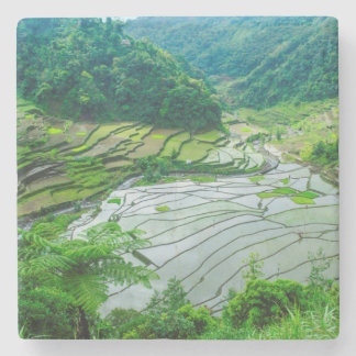Rice terrace landscape, Philippines Stone Coaster