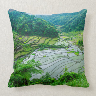 Rice terrace landscape, Philippines Throw Pillow