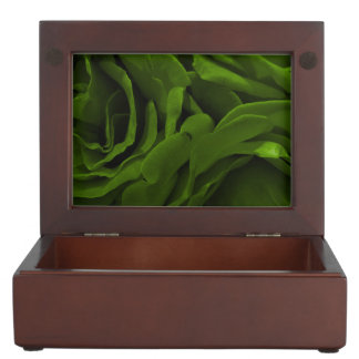 Rich olive green velvety roses flower photo keepsake box