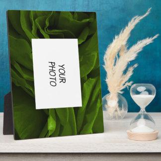 Rich olive green velvety roses flower photo plaque