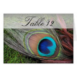 Rich Peacock Feather/Green Moss Table Number Card