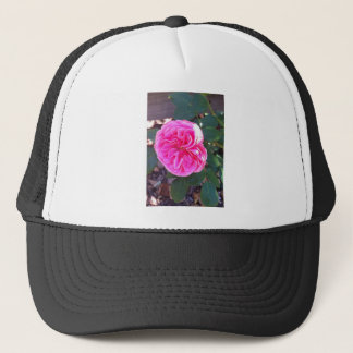 Rich Pink Rose Trucker Hat