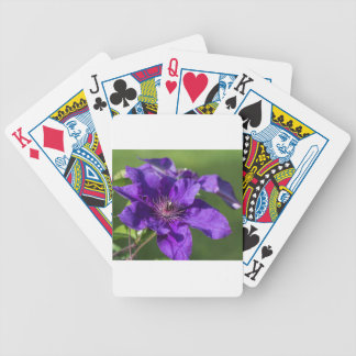 Rich Purple Clematis Blossom Macro Poker Deck