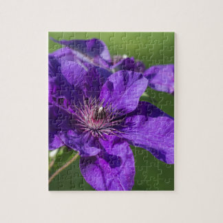 Rich Purple Clematis Blossom Macro Puzzle