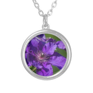 Rich Purple Clematis Blossom Macro Silver Plated Necklace