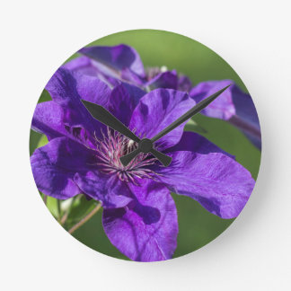 Rich Purple Clematis Blossom Macro Wall Clocks
