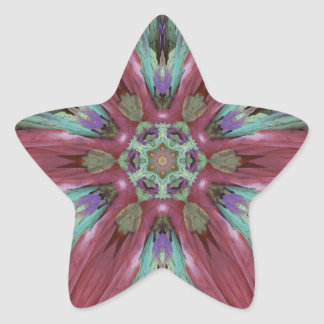 Rich Rose Teal Modern Artistic Pattern Star Sticker