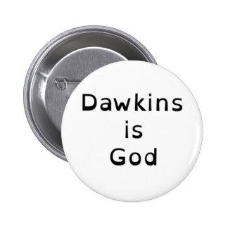 Richard Dawkins is God Buttons