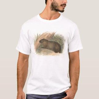 Richard Lydekker - Tasmanian Wombat T-Shirt