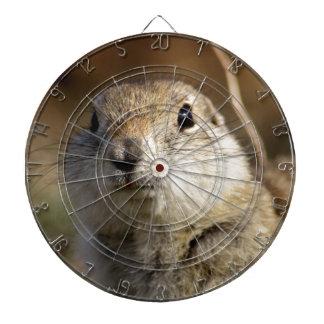Richardsons Ground Squirrel, aka, Prairie Gopher Dartboard