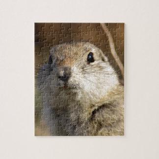Richardsons Ground Squirrel, aka, Prairie Gopher Jigsaw Puzzle