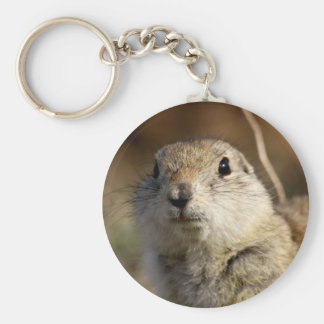 Richardsons Ground Squirrel, aka, Prairie Gopher Key Ring