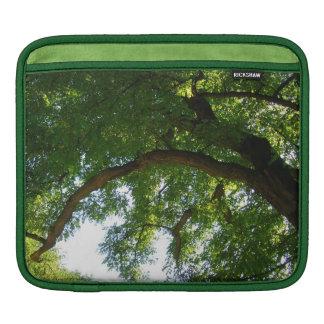 Rickshaw sleeve Tree iPad Sleeves