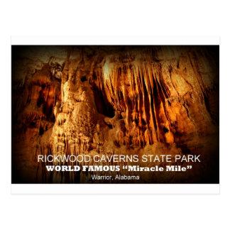 RICKWOOD CAVERNS STATE PARK - WARRIOR, ALABAMA POSTCARD