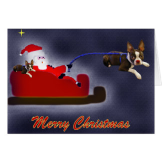 Rider the Red Nosed Boston Terrier Card