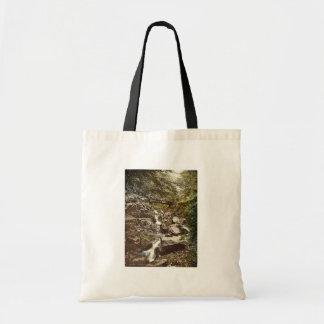 Riefenbachsfall, Harzburg, Hartz, Germany rare Pho Tote Bag